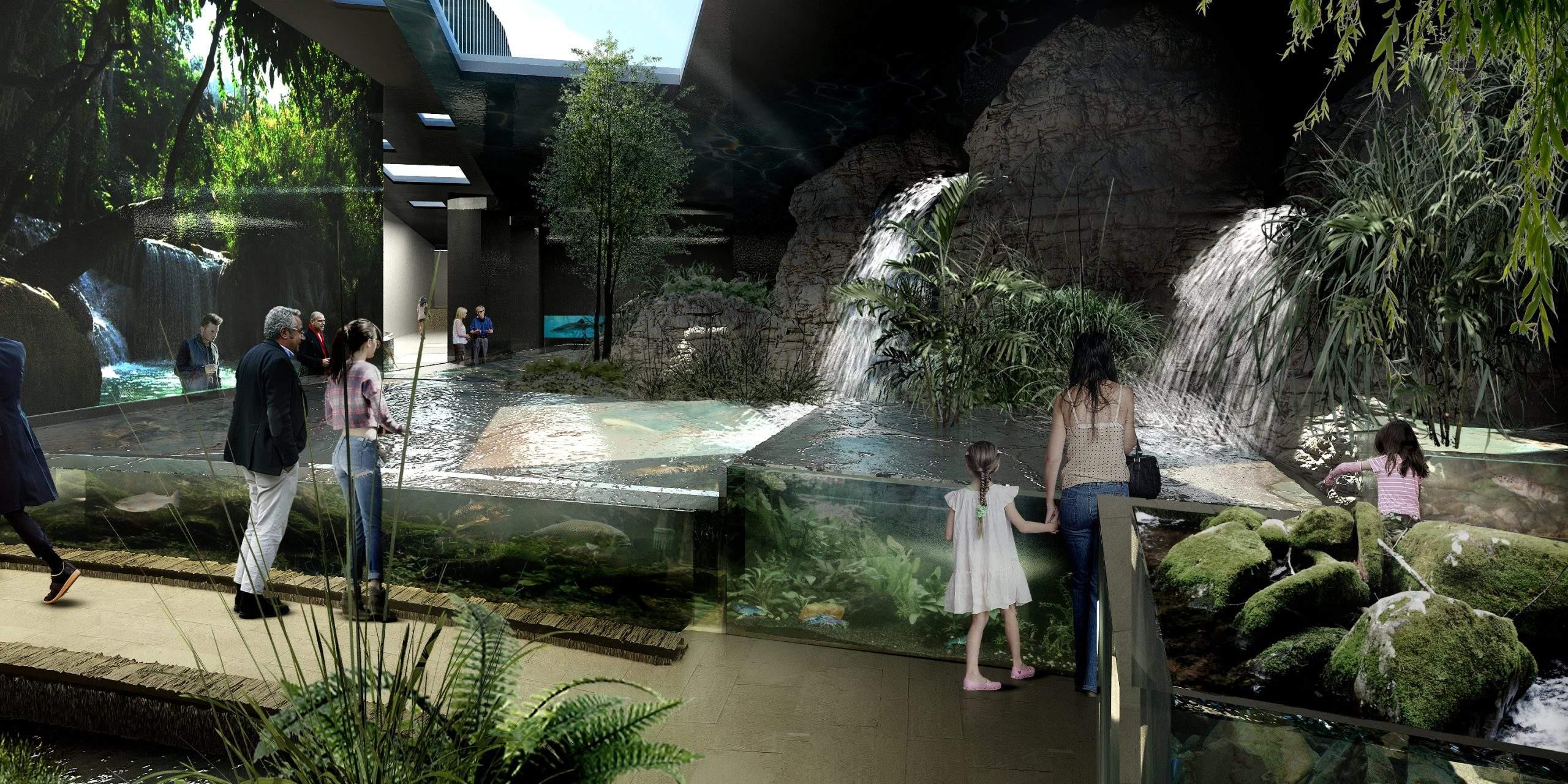 aquarium-canet-roussillon-6